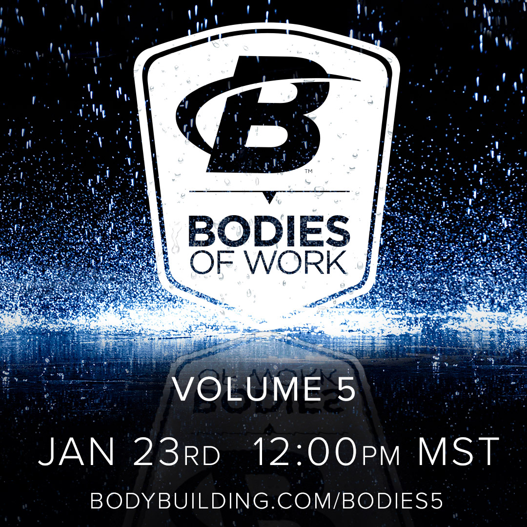 Bodies of Work Volume 5